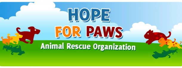 My Favorite Charity, Hope For Paws – Animal Rescue
