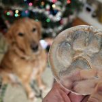 Dog Keepsake 810x5401 150x150 - Fantastic Gifts For Dog Lovers