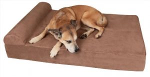 412YaGx1RJL 300x154 - What To Look For In The Best Dog Beds For Small Dogs