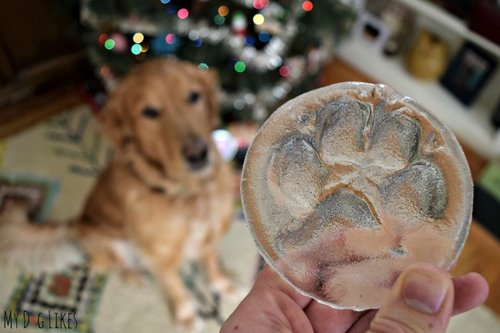 Dog Keepsake 810x5401 - Make a Glass Print of your Pet's Paw