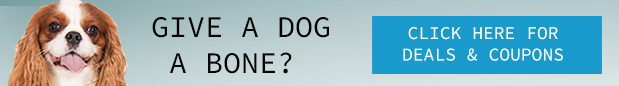ad banner - Can Dogs See Color?