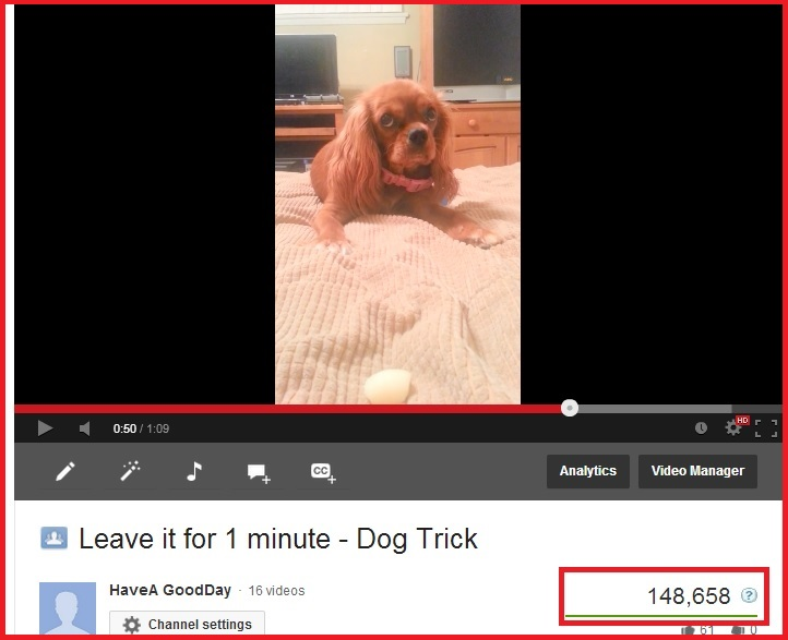"""924stats - Thank you to my fans that keep viewing my """"leave it"""" video"""