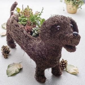 normal_dachshund-planter[1]