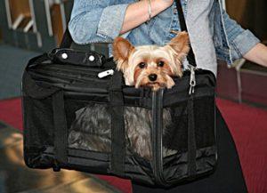 Sherpa Original Deluxe Pet Carrier