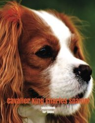 Cavalier King Charles Spaniel Sketchbook for Teens: Blank Paper for Drawing, Doodling or Sketching 120 Large Blank Pages (8.5″x11″) for Sketching, … for Teens (Volume 71)