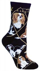 Cavalier King Charles Spaniel Puppy Dog Breed Animal Socks Made in USA (Large (Womens 11-13))