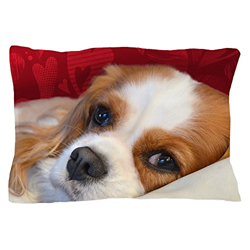 CafePress – Cavalier King Charles Spaniel – Standard Size Pillow Case, 20″x30″ Pillow Cover, Unique Pillow Slip