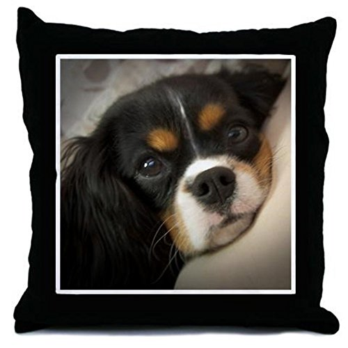 CafePress Cavalier King Charles Spaniel – Decor Throw Pillow (18″x18″)