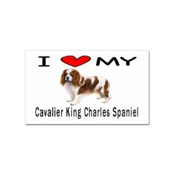 I Love My Cavalier King Charles Spaniel Rectangular Sticker