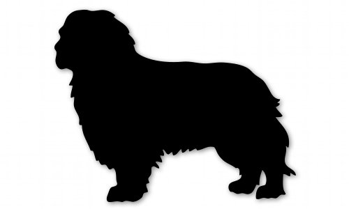 Cavalier King Charles Spaniel Dog Breed Vinyl Sticker – Car Phone Helmet – SELECT SIZE
