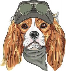 Cute Watercolor Cavalier King Charles Spaniel Puppy Dog Vinyl Decal Sticker (4″ Tall)