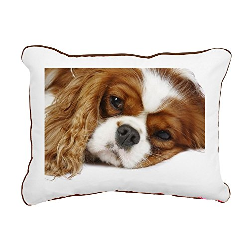 CafePress – Cavalier King Charles Sp – 12″x15″ Canvas Pillow, Throw Pillow, Accent Pillow
