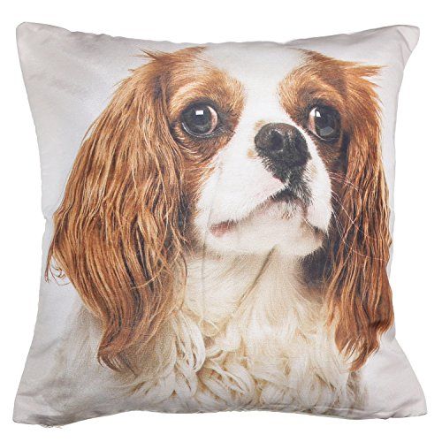 ShalinIndia Digitally Printed Animal Face Cushion Cover Set Of 2,18×18 Inch,Faux Silk Dupion,Cavalier King Charles Spaniel