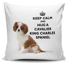 Decorative Inspirational Quotes Pillow Cover Keep Calm And Hug A Cavalier King Charles Spaniel Cushion Cover Pillow Case 18X18 Inches