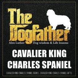 Dogfather: Cavalier King Charles Spaniel Wisdom & Life Lessons: Cavalier King Charles Spaniel gifts