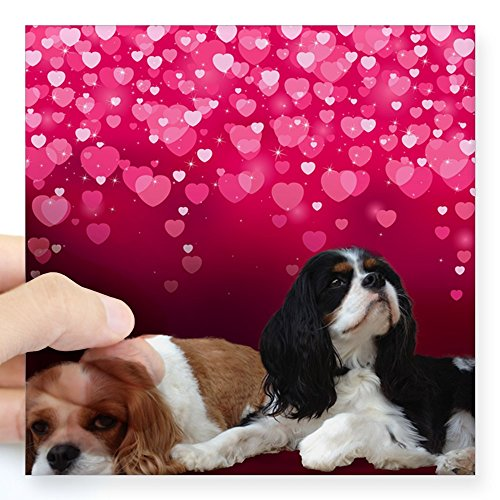 CafePress – Cavalier King Charles Spani Square Sticker 3″ x 3″ – Square Bumper Sticker Car Decal, 3″x3″ (Small) or 5″x5″ (Large)