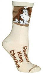 Cavalier King Charles Natural Color Cotton Ladies Socks