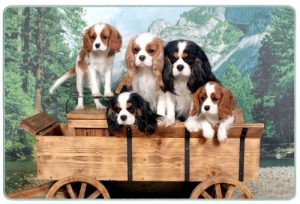 Canine Designs Cavalier King Charles Spaniel Tempered Glass Cutting Board – Small