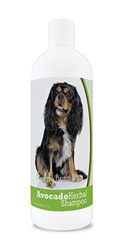 Healthy Breeds Herbal Avocado Dog Shampoo for Dry Itchy Skin for Cavalier King Charles Spaniel – Over 100 Breeds – Flea and Tick Product Safe – For Dogs with Allergies or Sensitive Skin – 16 oz