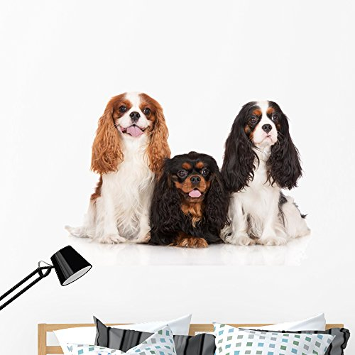 Wallmonkeys Three Cavalier King Charles Wall Decal Peel and Stick Graphic (48 in W x 32 in H) WM362356