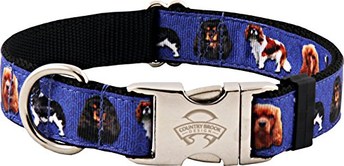 Country Brook Design Premium Cavalier King Charles Ribbon Dog Collar – Medium