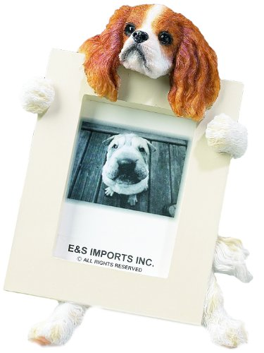 Cavalier King (Brown) Charles Spaniel 2.5″ x 3.5″ Picture Frame