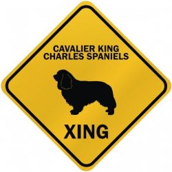 "ONLY "" CAVALIER KING CHARLES SPANIELS XING "" CROSSING SIGN DOG"
