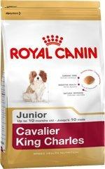 Royal Canin Cavalier King Charles Junior (1.5kg)