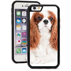 For Apple iPhone Shockproof Impact Hard Soft Case Cover Cavalier King Charles Spaniel Dog (Black for iPhone 7 Plus)