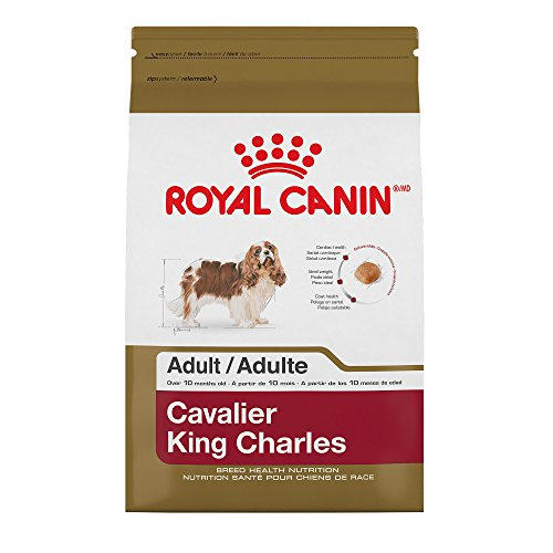Royal Canin 510810 Breed Health Nutrition Cavalier King Charles Adult Dry Dog Food, 10 lb