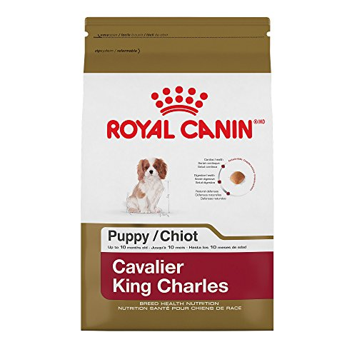 Royal Canin 510303 Breed Health Nutrition Cavalier King Charles Puppy Dry Dog Food, 3  lb