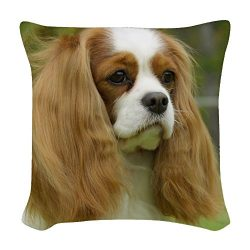 CafePress – Cavalier King Charles Spaniel – Woven Throw Pillow, Decorative Accent Pillow