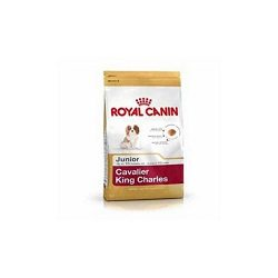 Royal Canin Cavalier King Charles Junior (1.5kg) (Pack of 4)