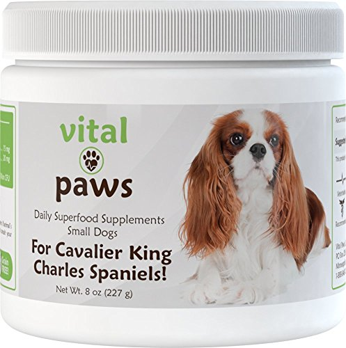 "Vital Paws – Just for Cavalier King Charles Spaniels! Daily Superfood Supplement Biscuits (Dog ""Multivitamins"")"