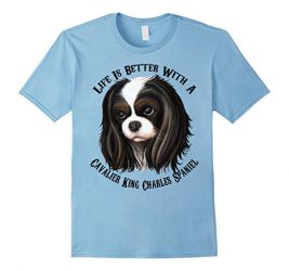 Womens Cavalier king charles spaniel t shirt Medium Baby Blue