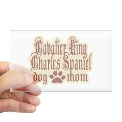 CafePress – Cavalier King Charles Spaniel – Rectangle Bumper Sticker Car Decal