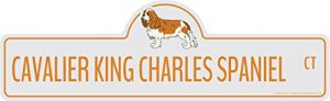 SignMission Cavalier King Charles Spaniel Street Sign | Indoor/Outdoor | Dog Lover Funny Home Décor for Garages, Living Rooms, Bedroom, Offices personalized gift | 36″ Wide