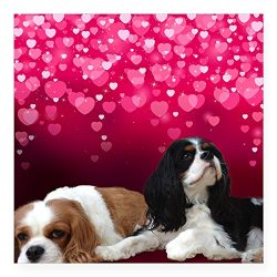 CafePress Cavalier King Charles Spani Square Sticker 3″ x 3″ Square Bumper Sticker Car Decal, 3″x3″ (Small) or 5″x5″ (Large)
