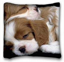 My Honey Pillow Pillow Cover Cavalier King Charles Spaniel Dream Puppy Dog Spaniel 18 in18 Twin Sides