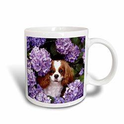 "3dRose mug_61913_2″Cavalier King Charles Spaniel"" Ceramic Mug, 15 oz, Multicolor"