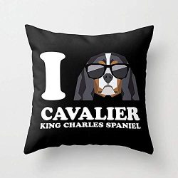 Youthday Hold Pillow Covers I Love Cavalier King Charles Spaniel Modern v2 Everyday 1818