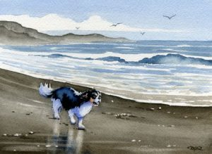 Cavalier King Charles Spaniel At the Beach Art Print By Watercolor Artist DJ Rogers