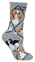 Cavalier King Charles Spaniel Dog Gray Large Cotton Socks