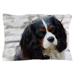 CafePress 2 Cavalier King Charles Spaniel Standard Size Pillow Case, 20″x30″ Pillow Cover, Unique Pillow Slip