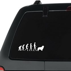 Eddany Cavalier King Charles Spaniel evolution Pack of 3 Vinyl Decal