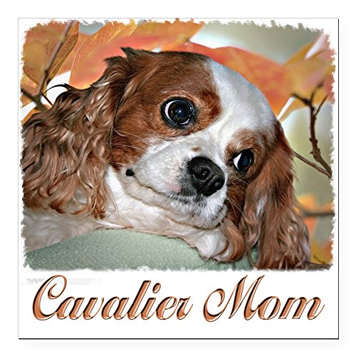 CafePress – Cavalier Mom Square Car Magnet 3″ x 3″ – Square Car Magnet, Magnetic Bumper Sticker
