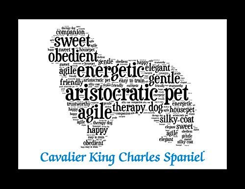 Cavalier King Charles Dog Wall Art Print – Personalized Pet Name – Gift for Her or Him – 11×14 matted – Ships 1 Day