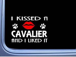 Cavalier Kissed L907 8″ Spaniel dog window decal sticker