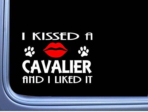 Cavalier Kissed L907 8″ Spaniel dog window decal sticker