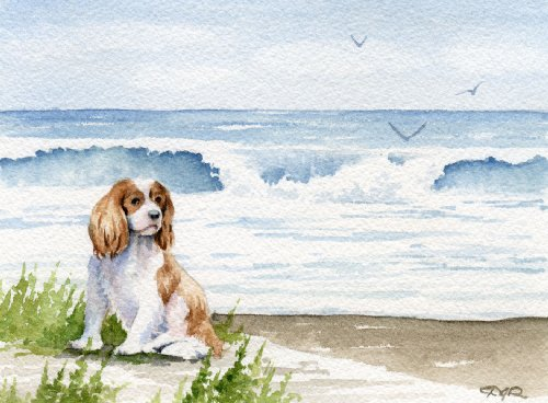 Cavalier King Charles Spaniel Art Print by Watercolor Artist DJ Rogers